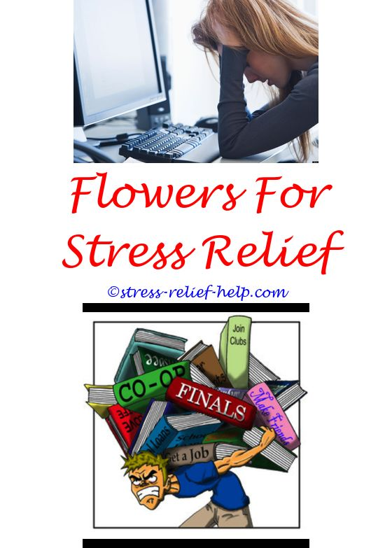 stress relief exercises to do at your desk - natural stress relief oils.30 min stress relief yoga tennesee tech stress relief serotonin natural anxiety and stress relief supplement to boost serotonin 8413618990