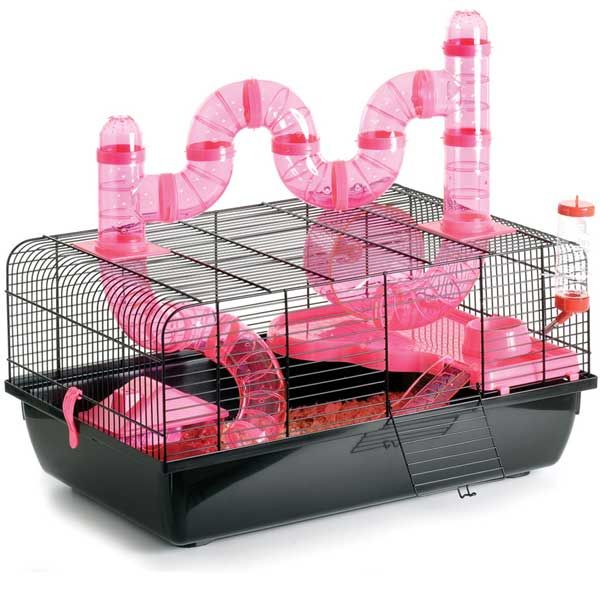Roll r Coaster Hamster Cage Hamster cages, Hamster care