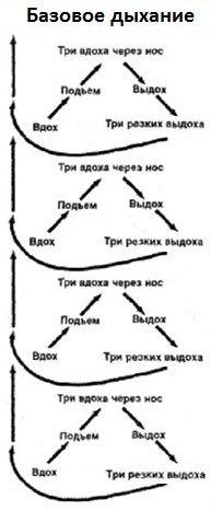 Программа дыхательных упражнений Oxycise! (Оксисайз) для похудения. Обсуждение на LiveInternet - Российский Сервис Онлайн-Дневников