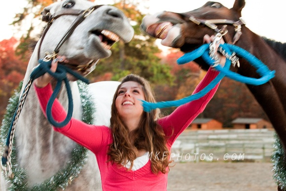 Smiling horses