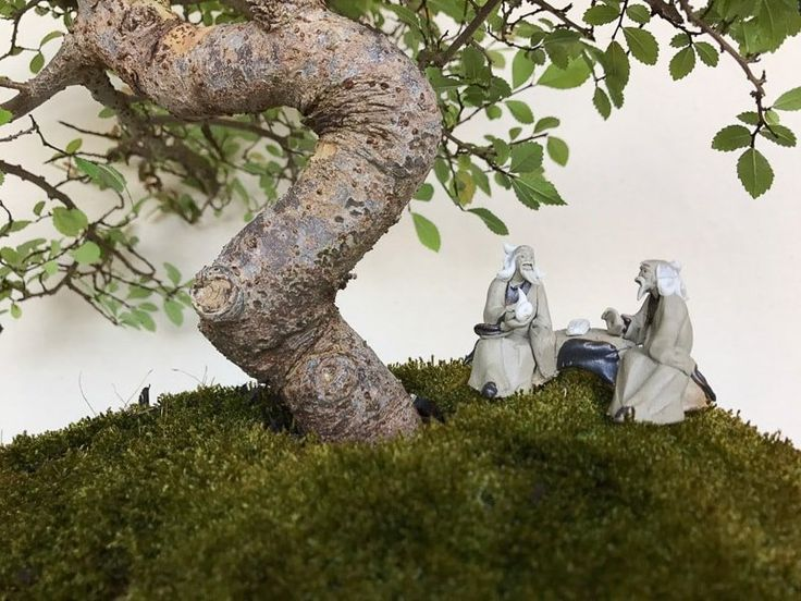Two mudmen with pipe talking by bonsai tree