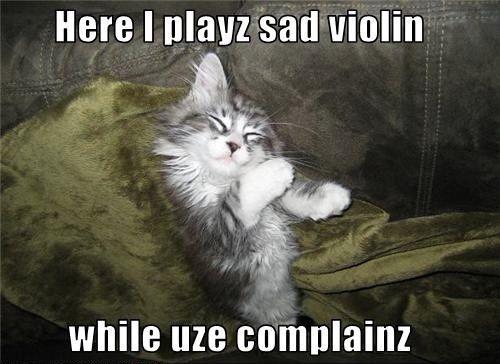 Funny Meme For Sad : Meme boyfriend shirt lonely cat kitty sad cute romance