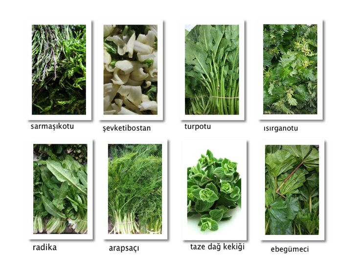 we are off to #Alaçatı this weekend... to the #Aegean coast of #Turkey.. for the annual herb festival... here are a few of the herbs we are hoping to get our hands on :) we'll be at @ev bharat alaçatı boutique hotel... #izmir and try new recipes...  www.bytesizecatering.com