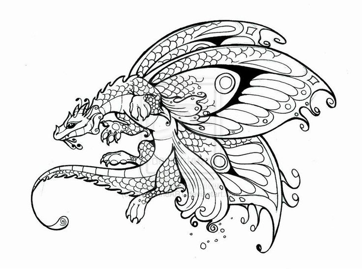 dragons and fairies coloring pages fairy dragon by sheyenneart - Coloring Pages Dragons Fairies
