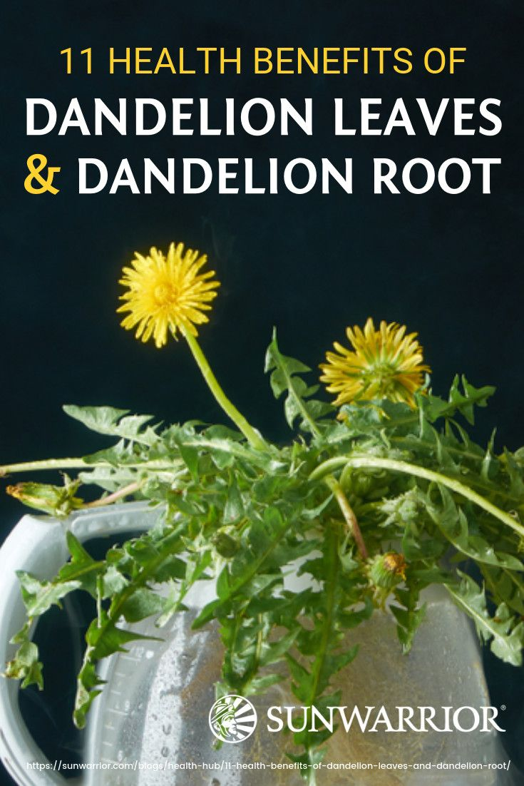 12 Health Benefits Of Dandelion Leaves And Dandelion Root Infographic Dandelion Benefits Dandelion Leaves Dandelion Leaf Benefits