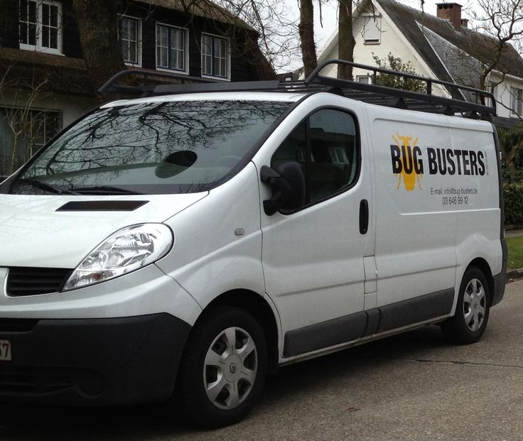 Bug Busters - specialist in ongediertebestrijding