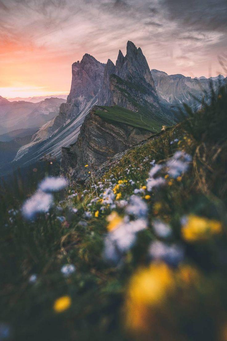 Ziele, Wünsche und Träume – Mehr Inspiration auf www.vitamin-erfol… oder auf www.erfolg-shirts.de – #auf #Inspiration #mehr