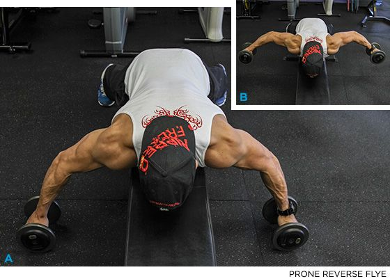Define Your Delts: 5 Must-Do Shoulder Exercises - Bodybuilding.com