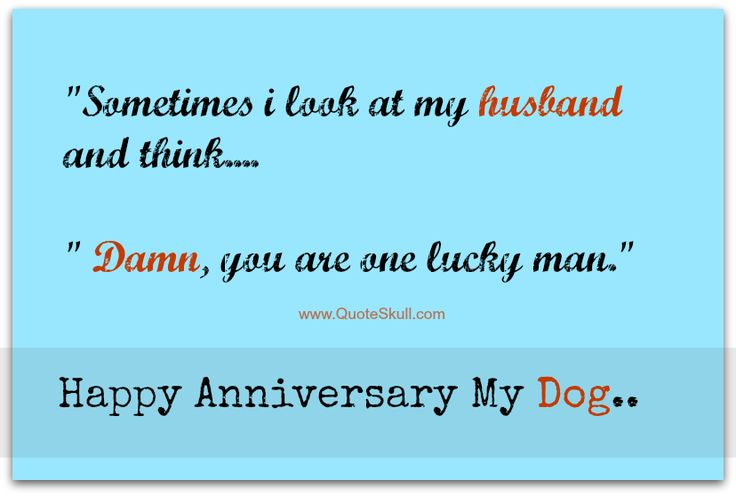 Husband Anniversary Quotes Funny: Best 25+ Funny Anniversary Quotes Ideas On Pinterest