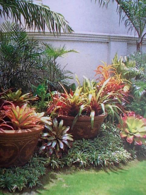 Pots in the borders- seasonal blooms - Gardening Rush
