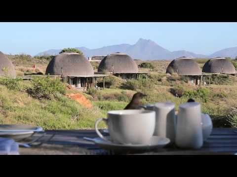 Luxury Safari Lodge Accommodation Garden Route, South Africa