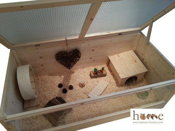 Best 20+ Hedgehog cage ideas on Pinterest