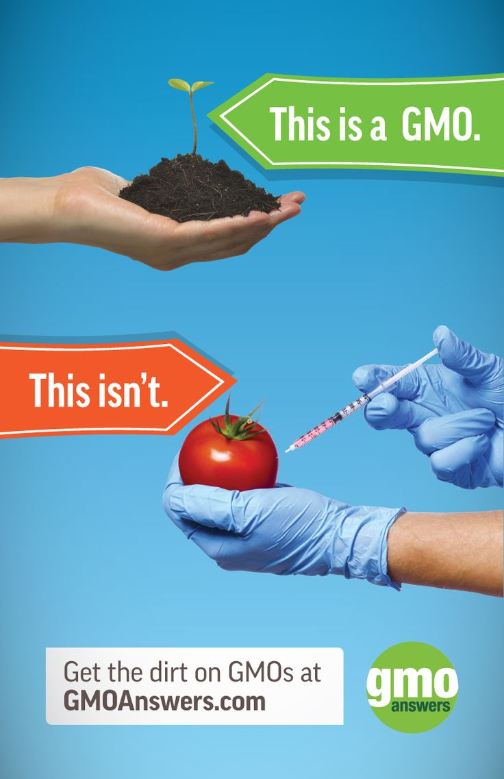 How are GMOs made? Find out here: https://gmoanswers.com/ask/how-do-you-genetically-modify-organism