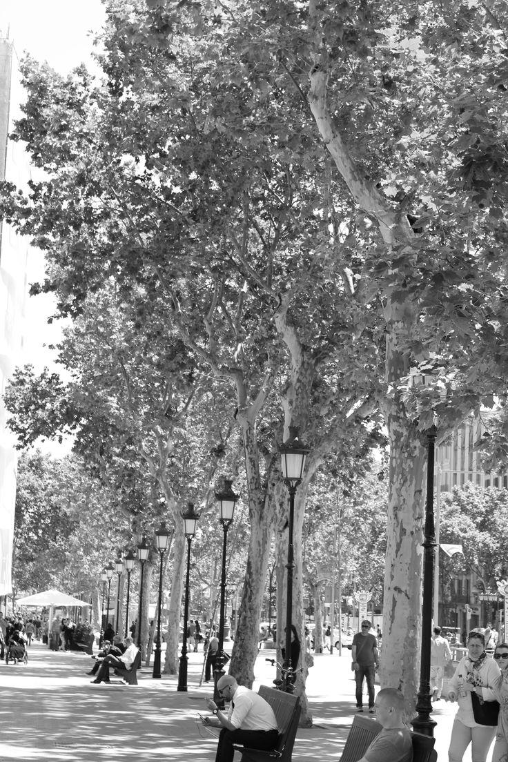 Barcelona street life! May 2014