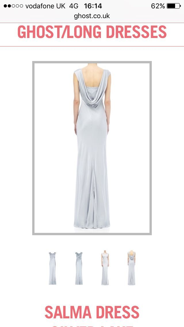 Back of bridesmaid dress (Silver)