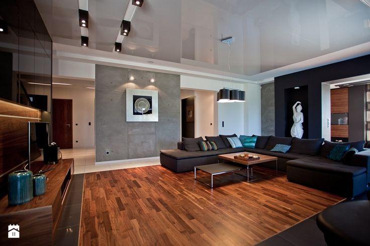 salon w domu jednorodzinnym - zdjęcie od A2 STUDIO pracownia architektury