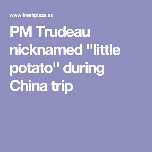 PM Trudeau nicknamed ''little potato'' during China trip