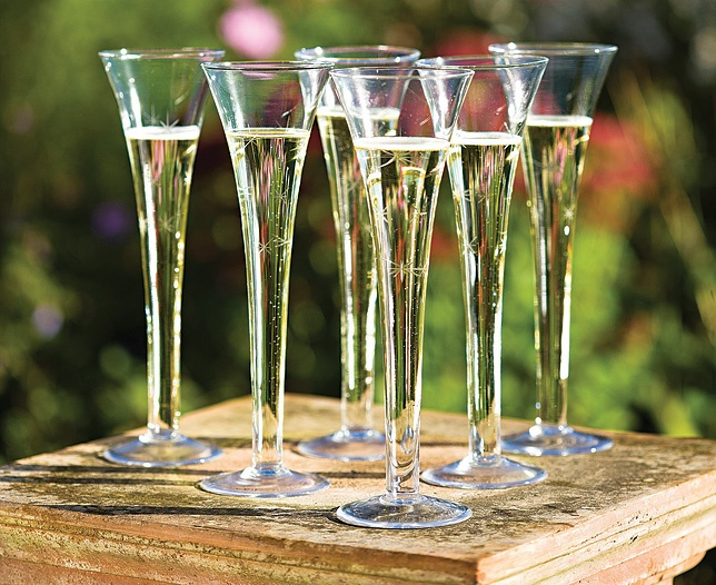 Pin by sarah lehman on home furnishings pinterest - Champagne flutes hollow stem ...