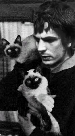 syd barrett with siamese cats