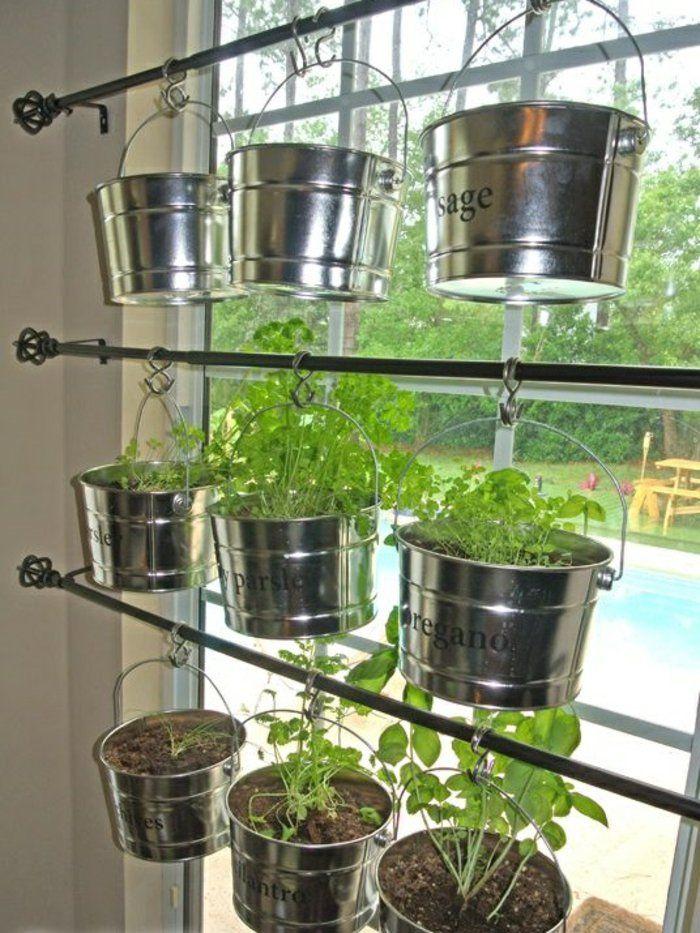 Potager d appartement plante verte d intérieur salle de séjour