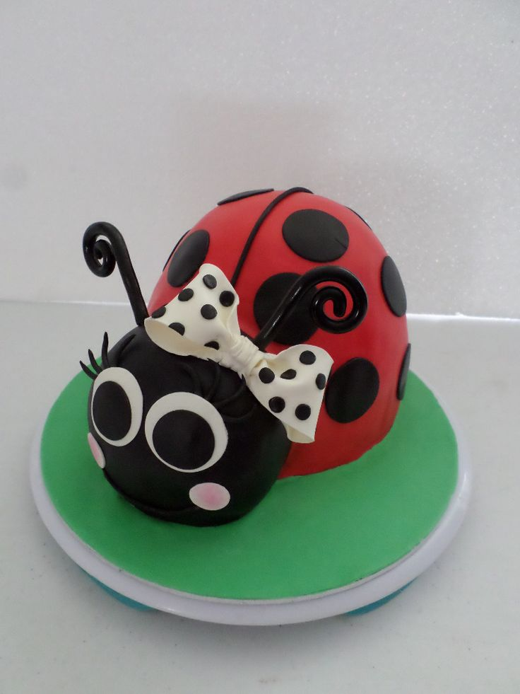 Best 25 Ladybug Birthday Cakes Ideas On Pinterest