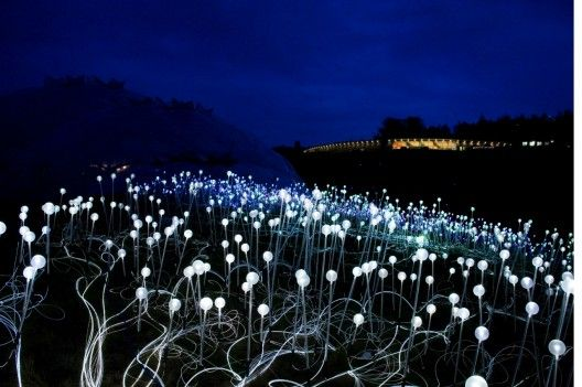 Bruce Munro announces plans for Solar Powered Field of Light at Uluru