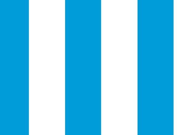 Camiseta Argentina - Nokia C3