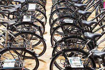 Bike+More Fahrrad Shop Wien