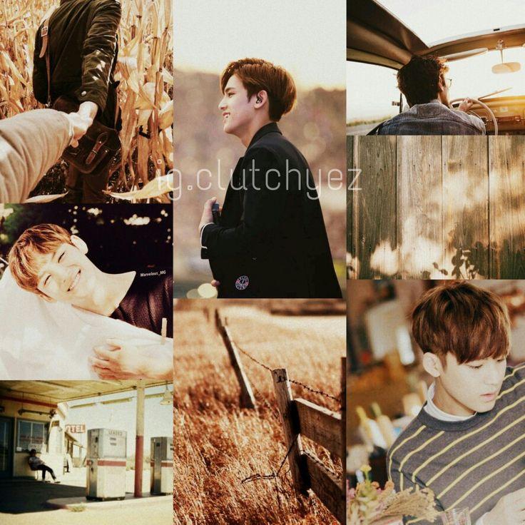 #field #brown #sunlight #mingyu #seventeen Follow ig @clutchyez_