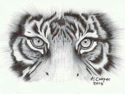 49+ Trendy eye tattoo for women tiger