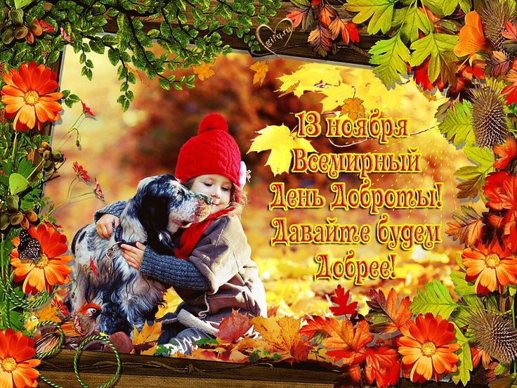 ️🍁🥀🍂🏵️🍂🥀🍁🏵️ 13 ноября всемирный день Доброты! | 13 ноября ...