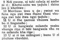 Language: Black Africans speak other languages. The most popular language is Nguni.People also speak Zulu, Xhosa, Ndebele, Swazi, and Sotho.