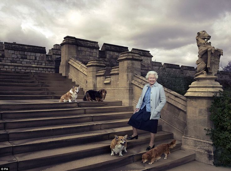 Smiling on the steps of Windsor Castle the Queen looks truly comfortable in the company of her four-legged and loyal companions