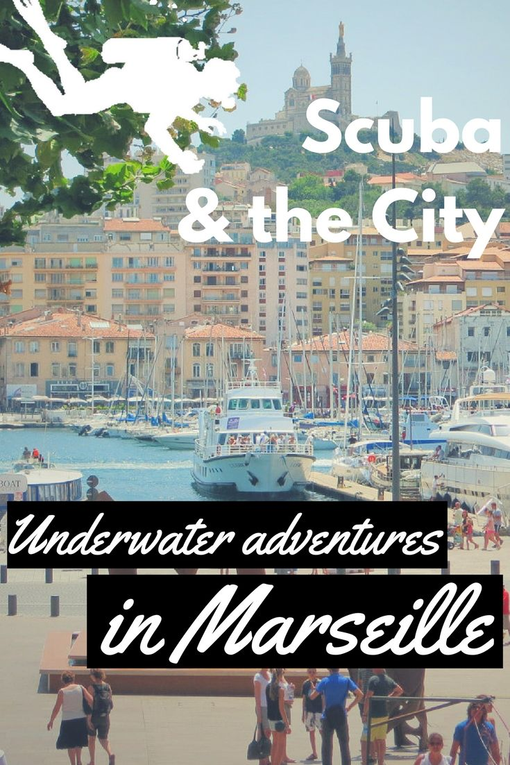 Scuba & the CIty: Underwater adventures in Marseille, France - World Adventure Divers - Travel - Scuba diving – Read more on https://worldadventuredivers.com/2013/08/23/scuba-the-city-underwater-adventures-in-marseille-france/