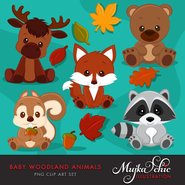 A wonderful set of baby woodland animals clipart. Baby fox clipart, baby raccoon clipart, baby bear clipart, baby moose clipart, baby squirrel clipart and fall leaves with an acorn graphic. Baby woodland animals are all in sitting position.  Perfect for invitations, party printables and embroidery.