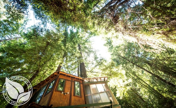 Glamping near Santa Cruz, Corralitos CA | Glamping Monterey Bay. Want to try this looks gorgeous