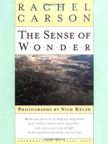 The Sense of Wonder by Rachel Carson, http://www.amazon.com/dp/006757520X/ref=cm_sw_r_pi_dp_Qq50pb153SDXR