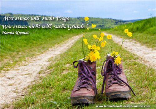 Wer etwas will, sucht Wege, wer etwas nicht will, sucht Gründe. Lust auf mehr Lebensfreude und Zitate? Dann schau vorbei: www.lebensfreude-evelyn-wenzel.com