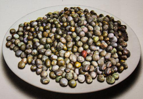 Medicinal Usage of Fever Nut