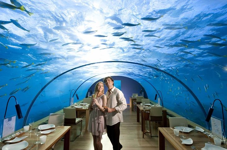 Cafe Culture – The Strangest Cafes In The World