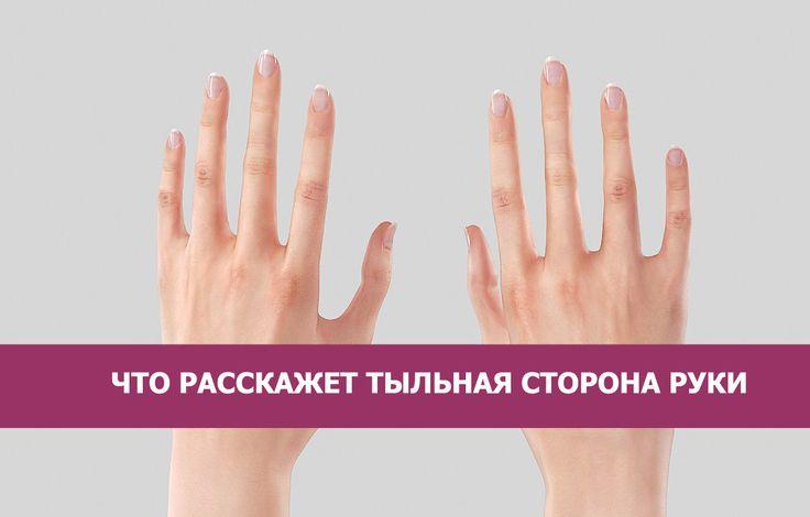 Рука имеет три основные формы: конусообразную, лопатообразную и квадратную. Есть также смешанный тип руки.     Конусообразна...