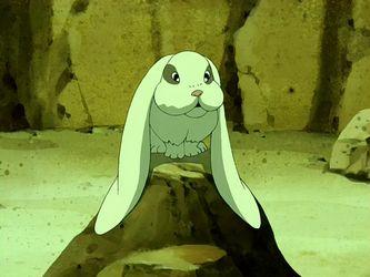 Conejo de orejas caídas | Avatar Wiki | Fandom powered by Wikia