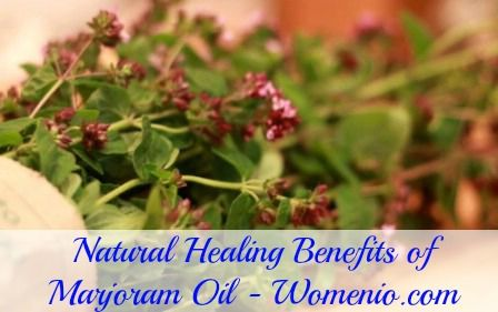 Top 15 Aromatherapy Oils and Their Therapeutic Benefits