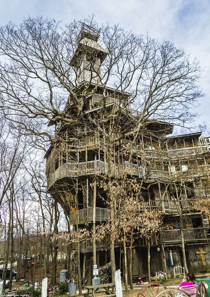 @StellaBlue  The tree house in Crossville Tennessee, the tallest in the world and it has taken 11 years for builder Horace Burgess to finish    Read more: http://www.dailymail.co.uk/news/article-2123686/Worlds-tallest-tree-house-reaches-stories-high.html#ixzz1rAw6uwrp