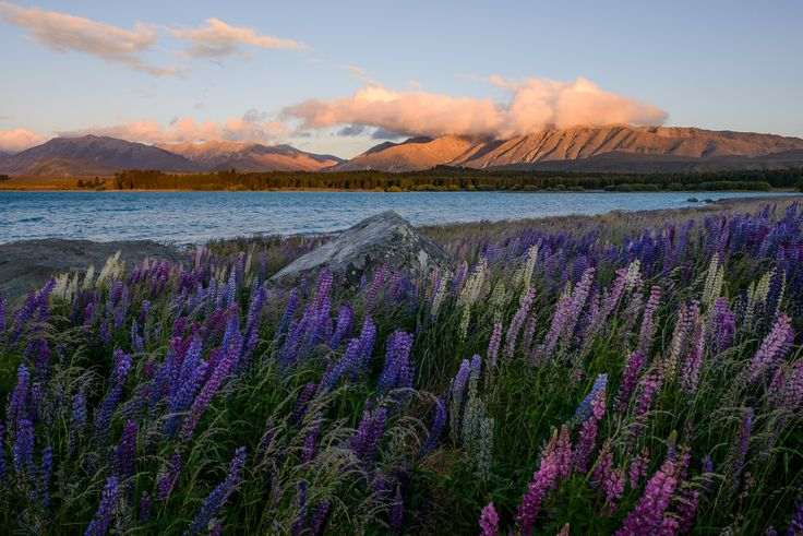 When to Use a Higher ISO for Landscape Photography