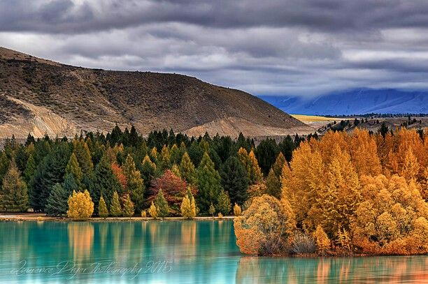 Amoklauf Neuseeland Video Pinterest: Die 25+ Besten Neuseeland Karte Ideen Auf Pinterest