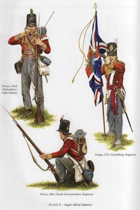 .British Infantry, possibly Waterloo. The Glosters were known to be one of the regiments there who were still not wearing the Belgic Shako. Note the Glosters back badge is nicely prominent.