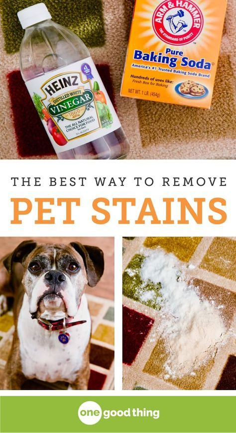 This Is The Simplest And Most Effective Method For Removing A Pet Stain From Carpet All You Need Little Vinegar Some Baking Soda
