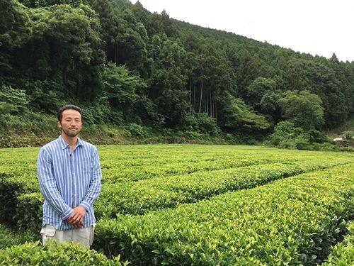 Visiting OTA TEA! - Ureshino, Saga  I went and visited the Ota Shigeki tea factory, located in Ureshino city, Saga...