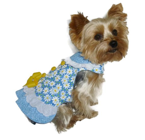 Little Dog Clothes Pattern 1708 Little Missy by SofiandFriends, $8.25